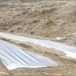 Soil Solarization And Its Use In Agriculture