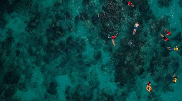 reef safe sunscreen ingredients to avoid