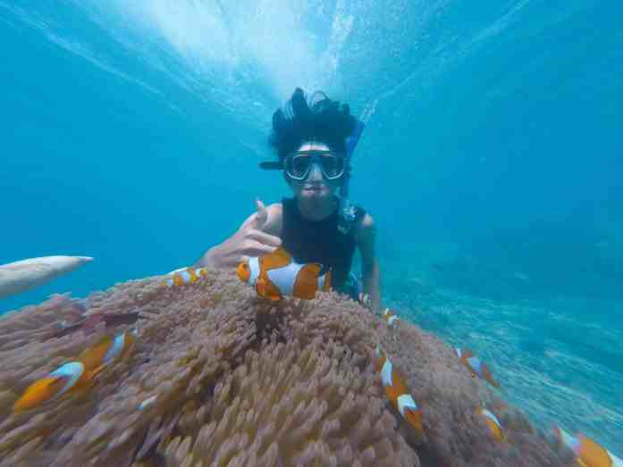 How to choose a free diving mask