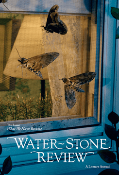 waterstone review, volume 13