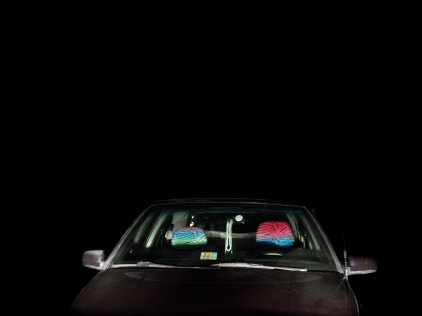 ANNE BEEKE, American Nights, Front Royal, 2015