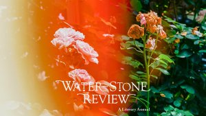 Water~Stone Review v 23 postcard
