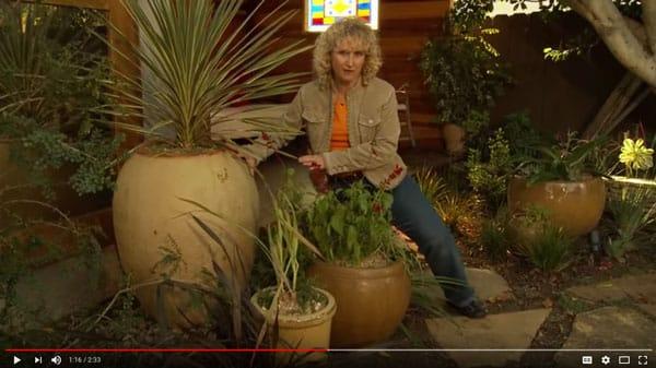 YouTube video - Nan Sterman - A Growing Passion