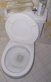 Toronto Clogged Toilet Repair