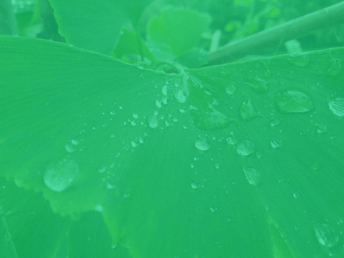 water billing software image