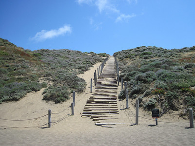 The Sand Ladder