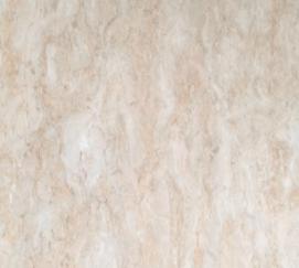 800 x 800 Floor Tile