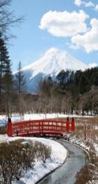 วิวฟูจิจากบริเวณสวนญี่ปุ่นที่หมู่บ้านนินจา