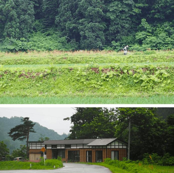 nature-rural-japan