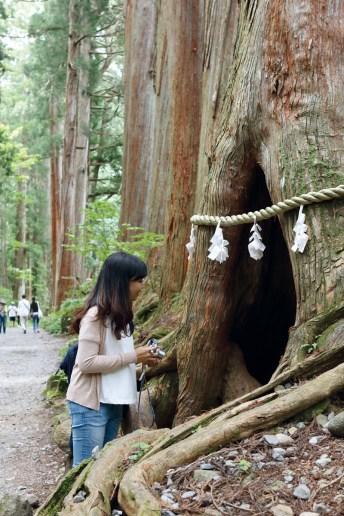 Zuijinmon Gate 2