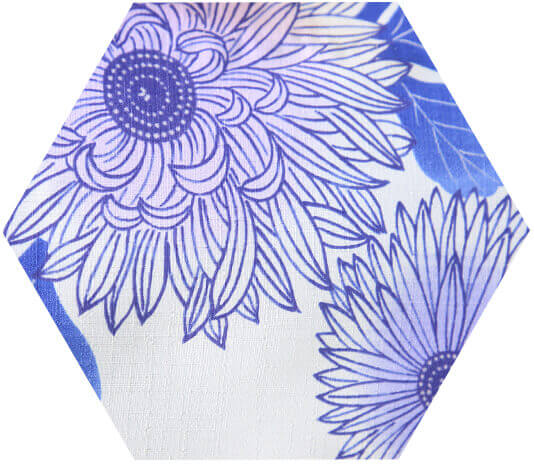 color hexagon 2
