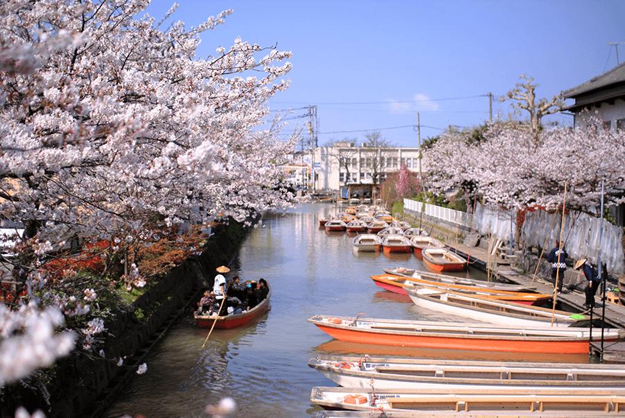 A-cruise-on-the-Yanagawa