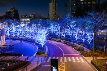 midtown-blue-trees