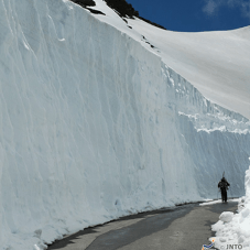 Norikura Kogen Impressive Snow Wall