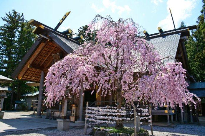 kaiseizan daijingu shrine