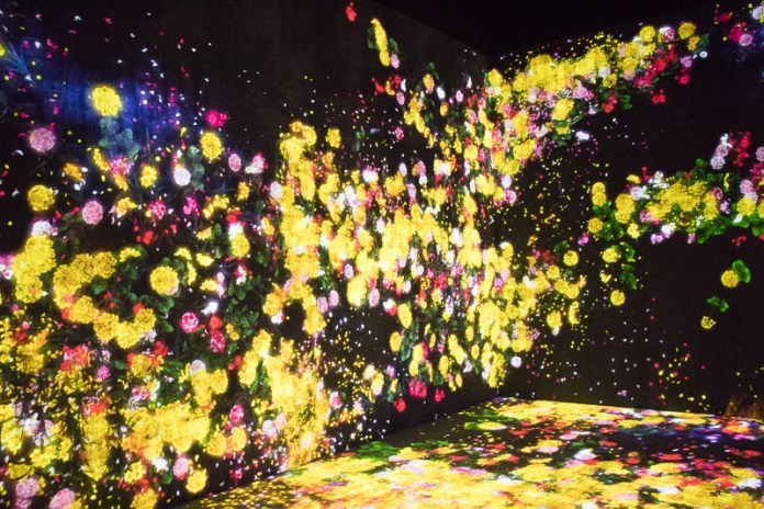 teamLab borderless flowers
