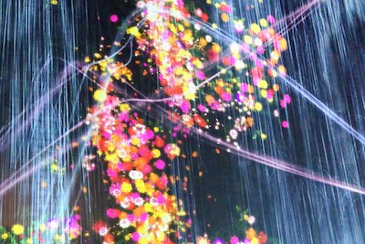 teamLab Borderless Untitled 02