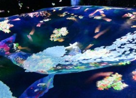 teamLab Borderless whale