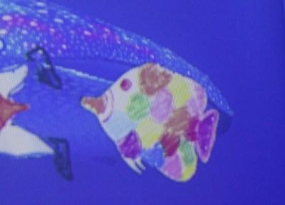 teamLab Borderless fish aquarium