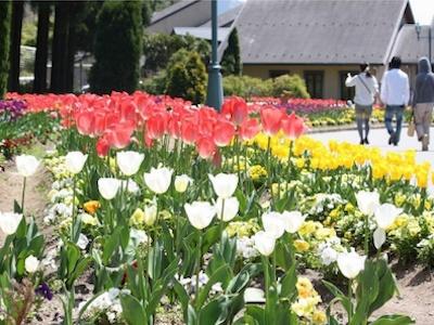 Yodel Forest, Kanzaki Rural Park