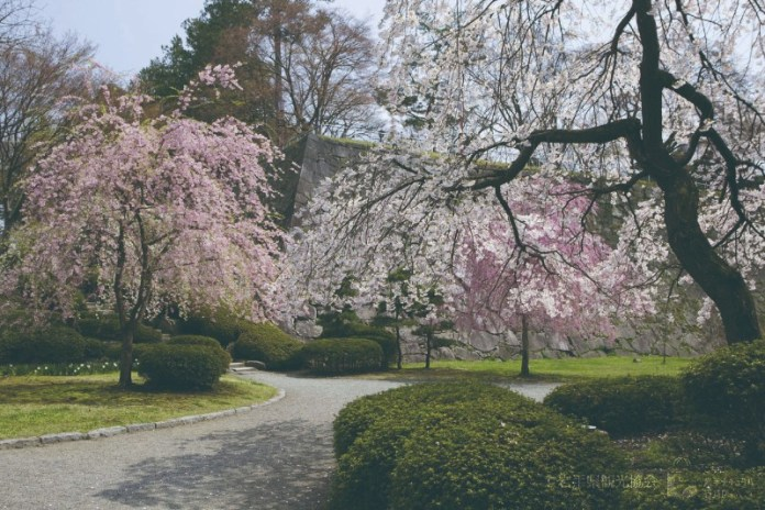 BUKEYASHIKI morioka