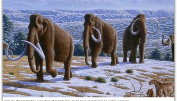 Climate Craziness of the Week: The AGU peddles a mammoth climate