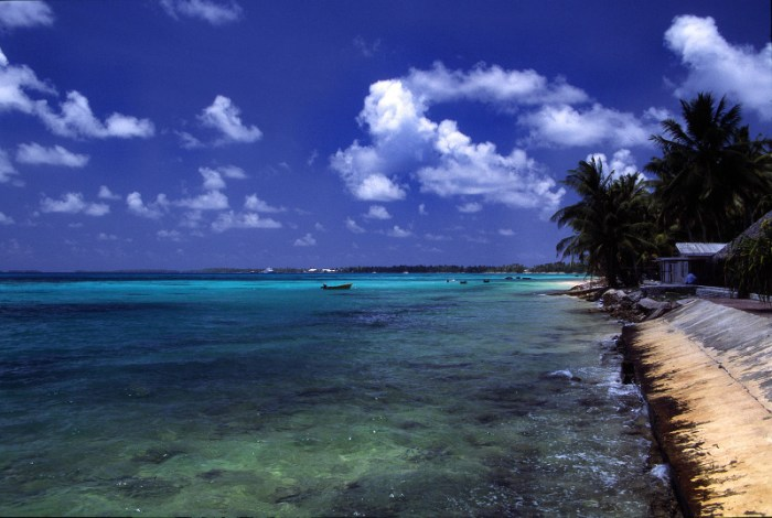 A beach at Funafuti atoll, Tuvalu, on a sunny day. Author Stefan Lins, source Wikimedia