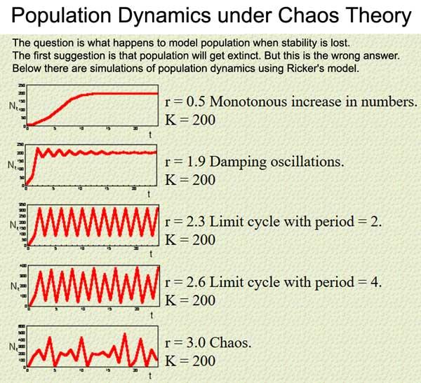 pop_dynamics_chaos_600