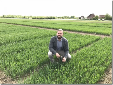 This is Kai Voss-Fels at the wheat trial site. Credit: Kai Voss-Fels