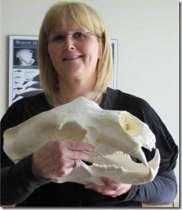 crockford-skull
