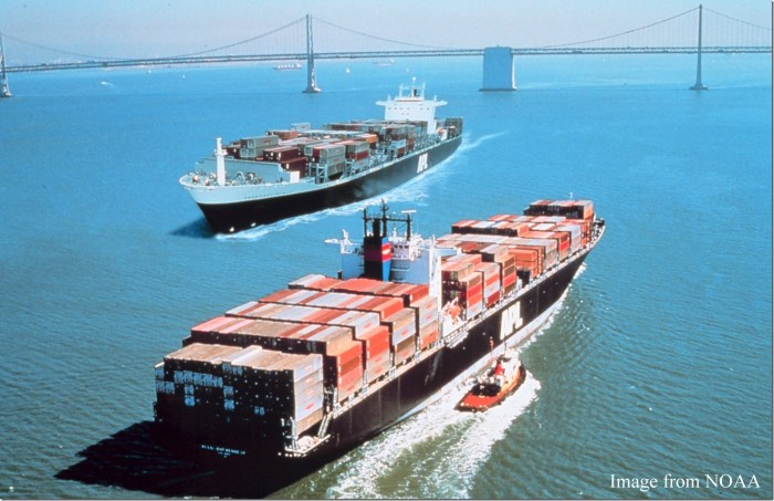 Container Ships Article
