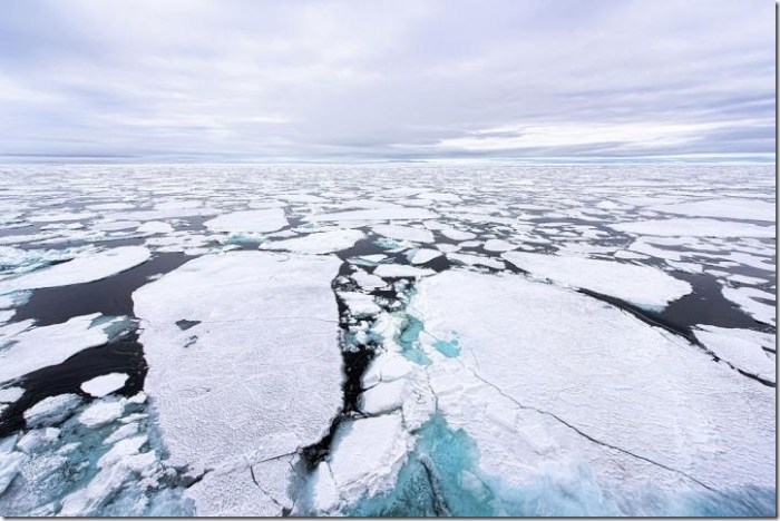 Sea ice at the North Pole in 2015. Credit: Christopher Michel