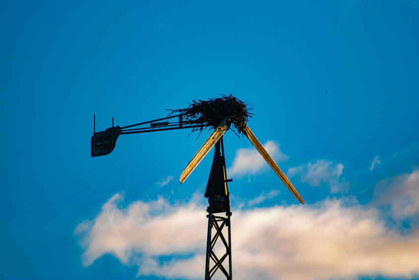 The Looming Failure of Wind Energy