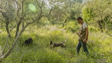 Truffle hunting in Tuscany with Alessandro from Siena Tartfufi