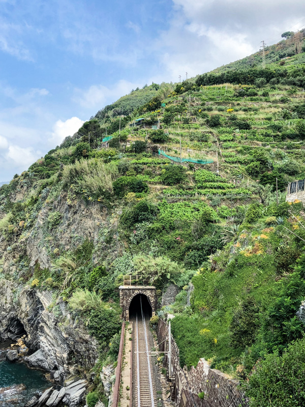 The train runs between the towns when Visiting Cinque Terre