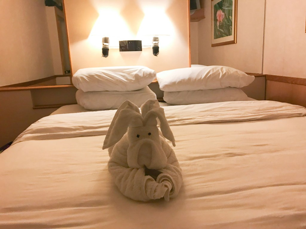The stewards make towel animals to greet you each evening.