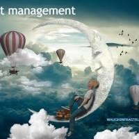 Asset Management - Head in the Cloud with Feet on Firm Foundations