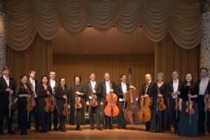 The Amadeus Consort