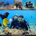 okinawa experience diving