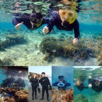 diving&snorkel
