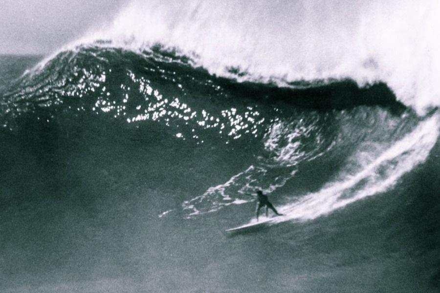 surfer fată datând
