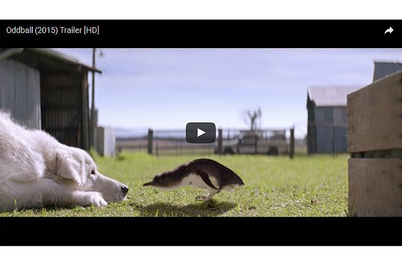 ペンギンを守ったヒーロー犬の物語・映画「オッドボール」