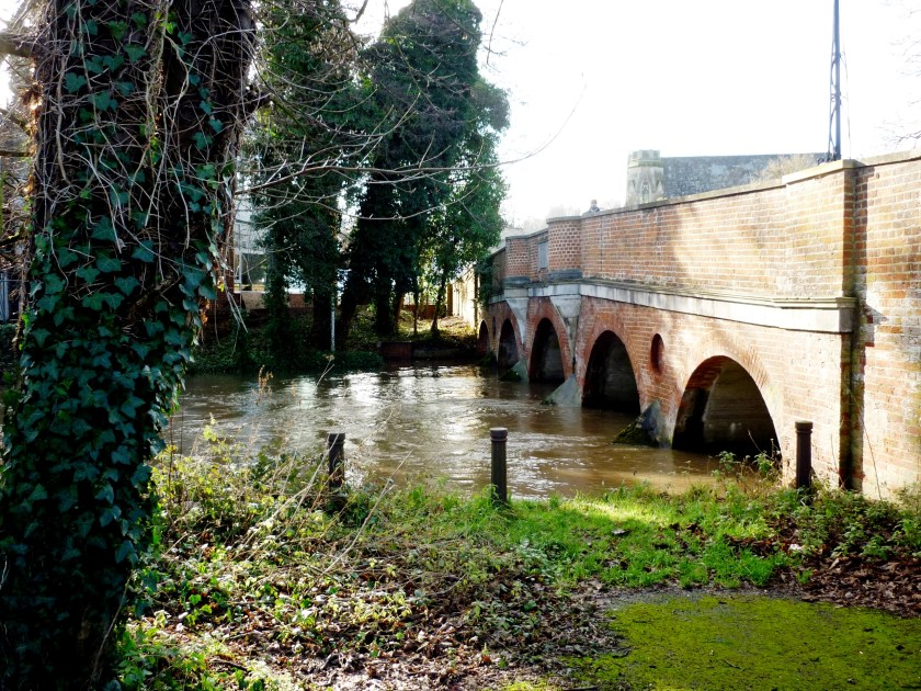 Godalming - River Wey under Bridge Street.JPG