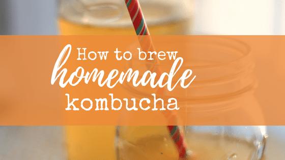 how to brew homemade kombucha from www.wavesandlilacs.com