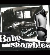 Babyshambles - Shotter's Nation (2007)