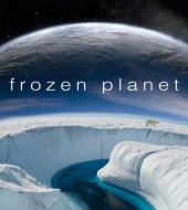 BBC: Замерзшая планета / Frozen Planet (2011)