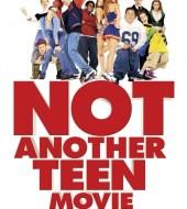 Недетское кино / Not Another Teen Movie