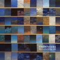 Tindersticks ‎– The Something Rain