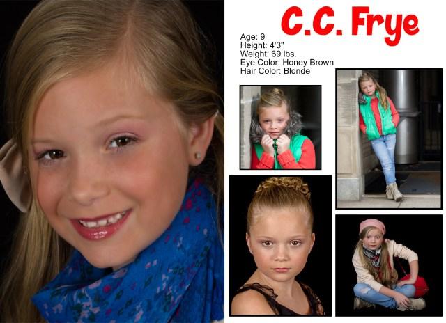 CF comp card