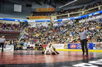 wrestling-11